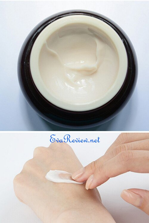 danh-gia-kem-chong-lao-hoa-innisfree-perfect-9-repair-cream-ex